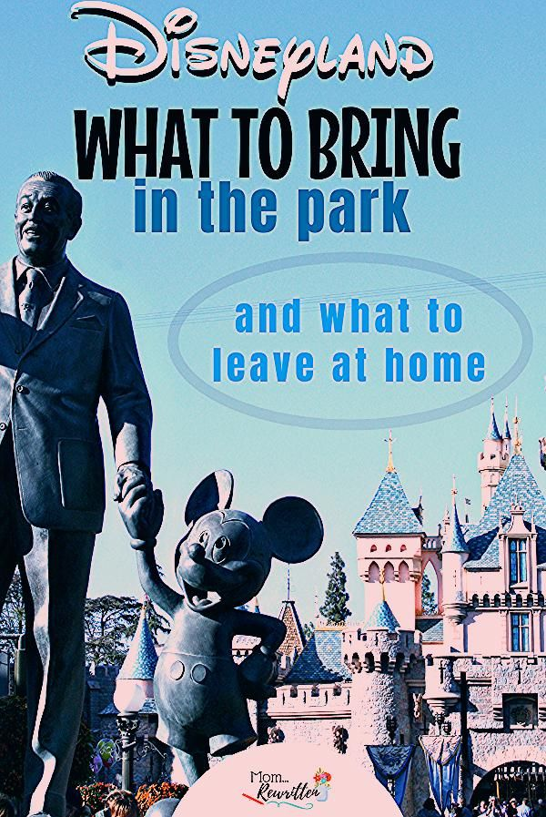 Photo of What to Bring to Disneyland (And What to Leave at Home)