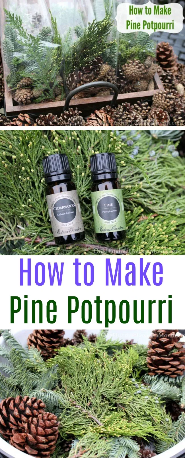 Photo of How to Make Pine Potpourri – One Hundred Dollars a Month