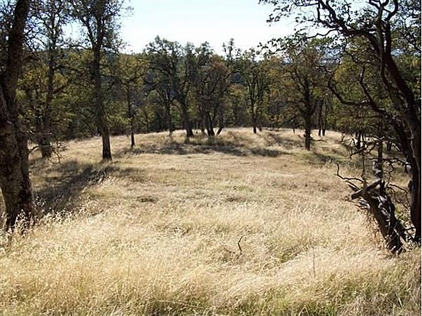 Build your dream home and watch the sun and moon rise over this very private 160 acres with spectacular panoramic views of rolling hills, oaks, pines, Manzanita, rock outcroppings and seasonal pond. A peaceful haven, 1/2 mile beyond a solar powered gated entry. Plenty of room for livestock, gardens and orchards. Many lovely building sites for a second home and guest cottage too. #zillow