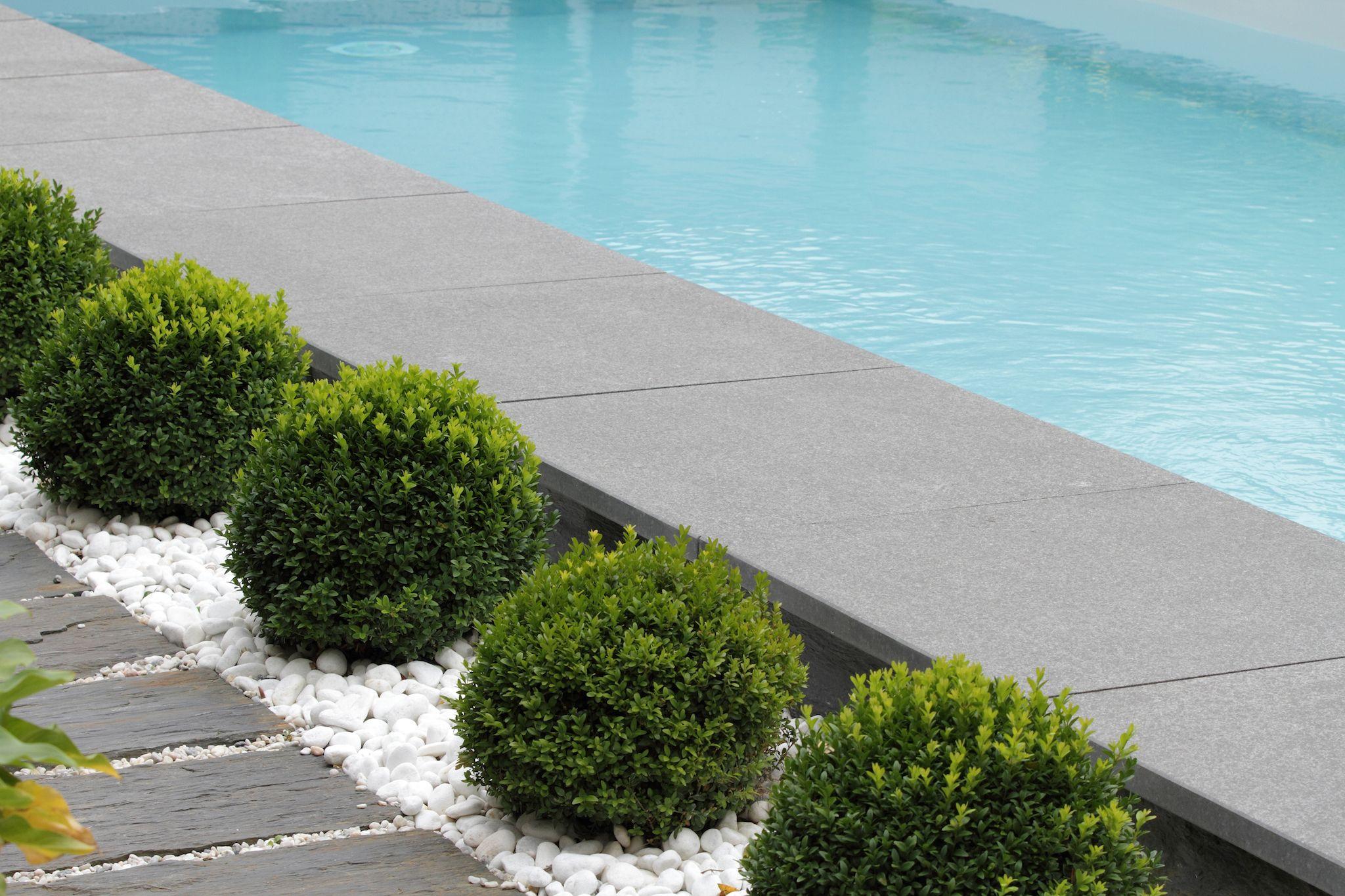 La piscine paysagée par l esprit piscine 9 5 x 4 m Revªtement