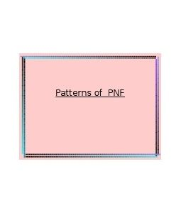 pnf in practice pdf free download