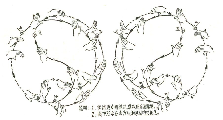 taichi #qigong #chikung tai chi hand movements | Kata, Hyung, and ...