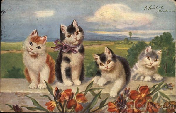 Four Kittens One With Bow At Neck Rest On Wall Cats