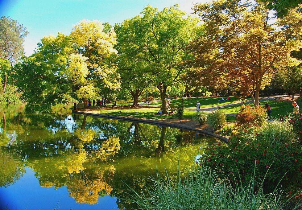 Image result for arboretum uc davis