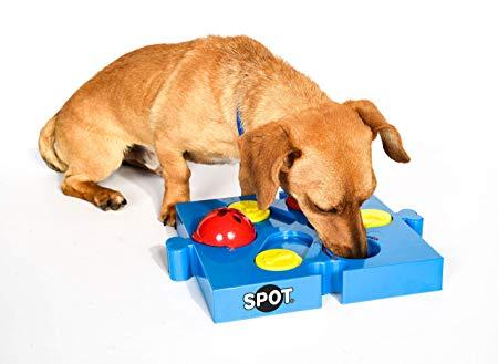 Amazon Com Spot Seek A Treat Flip N Slide Treat Dispenser For Dogs Dog Treat Dispenser Dog Treat Dispenser Toy In 2020 Smart Dog Toys Dog Toys Dog Treat Toys