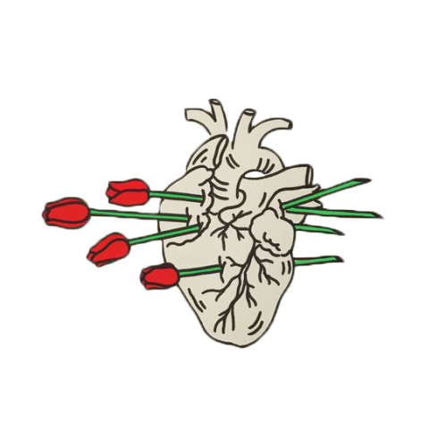심장.png (500×500)