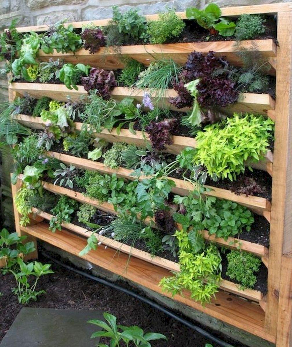 Brillian Creative Vegetable Garden Ideas Vertical garden
