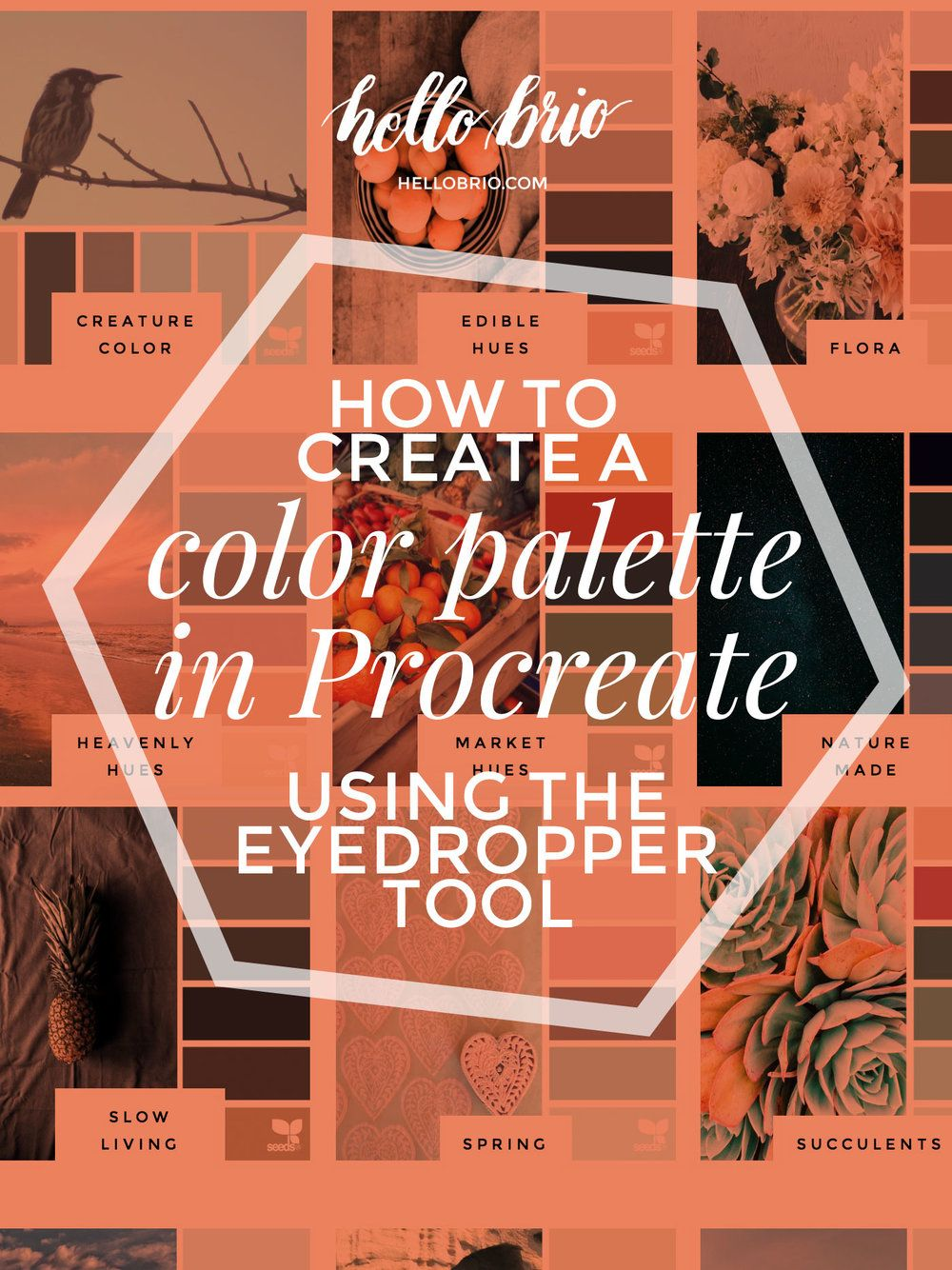 how to create a color palette in procreate using the eyedropper tool