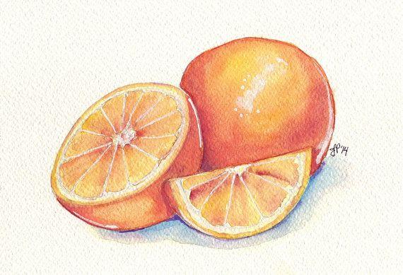 Oranges Still Life Watercolor Painting Orange Fruit Slice