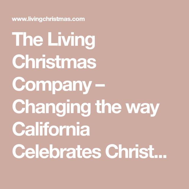The Living Christmas Company Changing The Way California Cele Tes Christmas