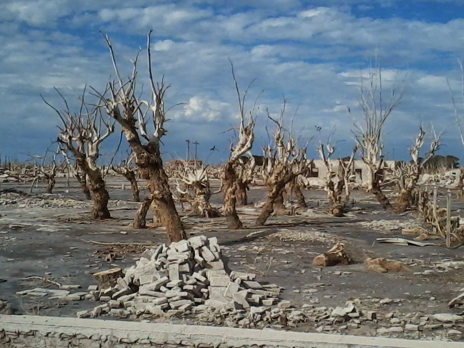 Villa Epecu N Outside Pinterest # Muebles Epecuen