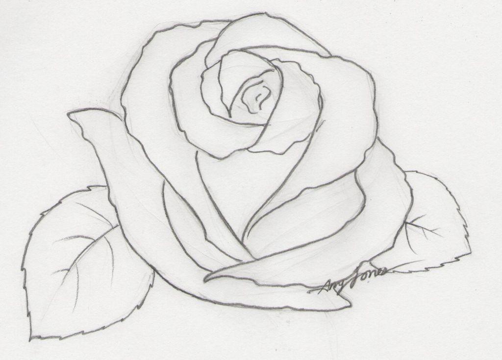 """Pencil Drawing Pictures Of Roses 1000 Images About Beautiful Drawn Roses On Pinterest Rose ̈˜ì±""""í™"""" Ìž¥ë¯¸ ʽƒ Ê·¸ë¦¬ê¸°"""
