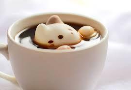 kawaii cat cafe - Cerca con Google