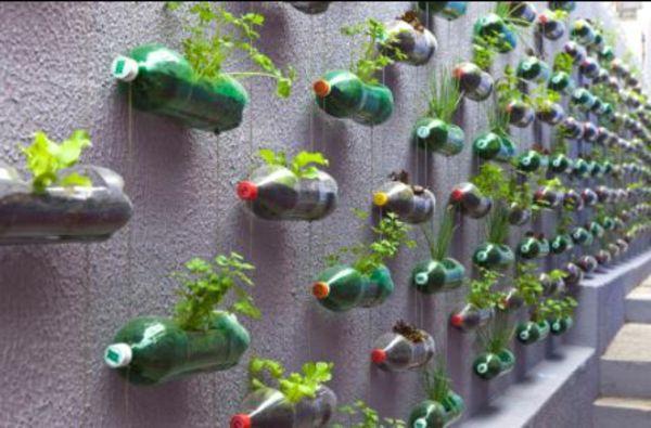 Blumentöpfe Selber Machen In Flaschen An Die Wand