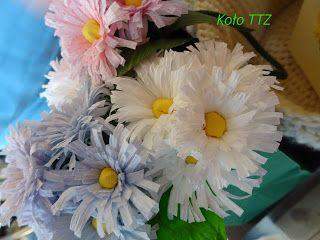 Kwiaty Wiosenne Stokrotki Krepina Recznierobione Kolo Technik Troche Zapomnianych Kura Wspiera Marcowa Wylegarnia Kur Plants