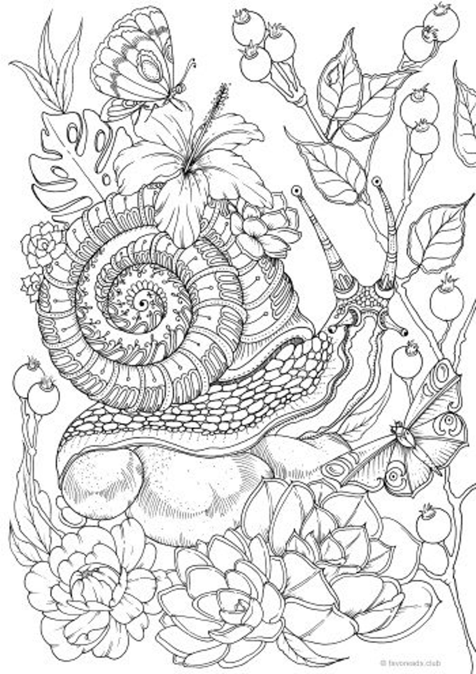 Super Hard Coloring Pages For Adults Colouring4u 78936 Hard Bird Coloring Pages Animal Coloring Pages Coloring Pictures Of Animals