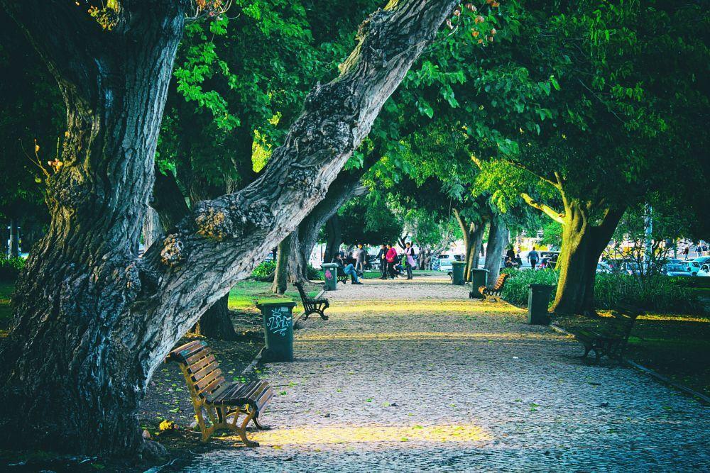 Belém - Lisboa By Bruno Miguel Sousa (Pr0m4xine)