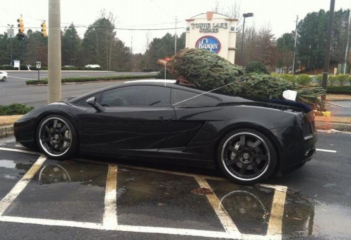 Quem vai buscar a árvore de Natal?