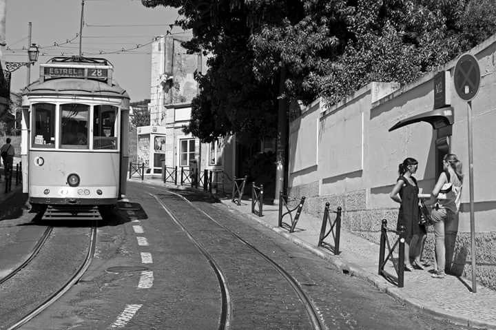 Sta Luzia #Lisboa #Portugal
