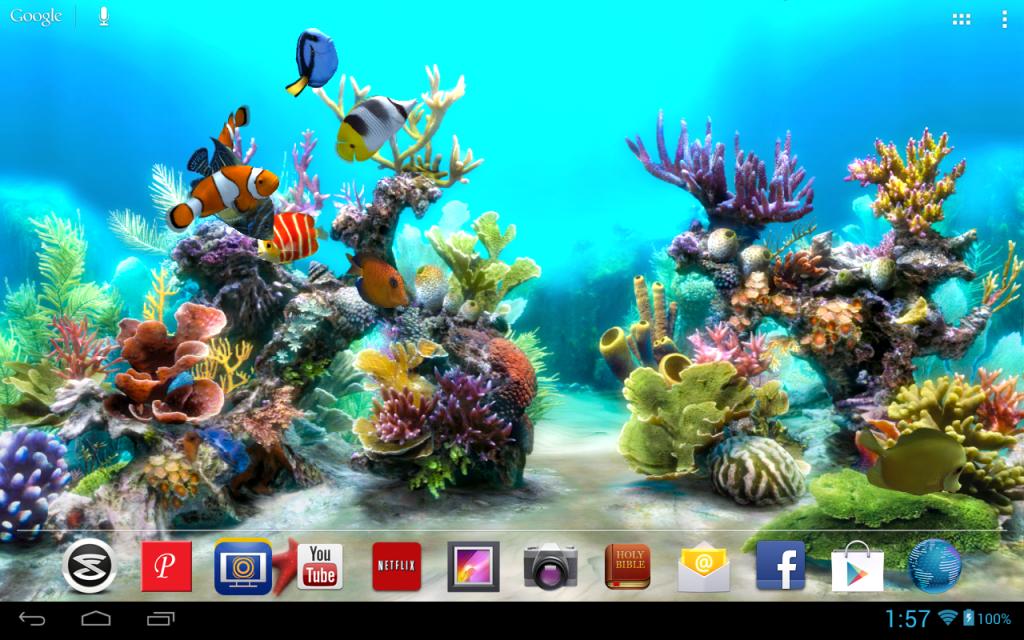 Live Wallpaper For Laptop Aquarium Live Wallpaper Wallpaper Pc Tank Wallpaper