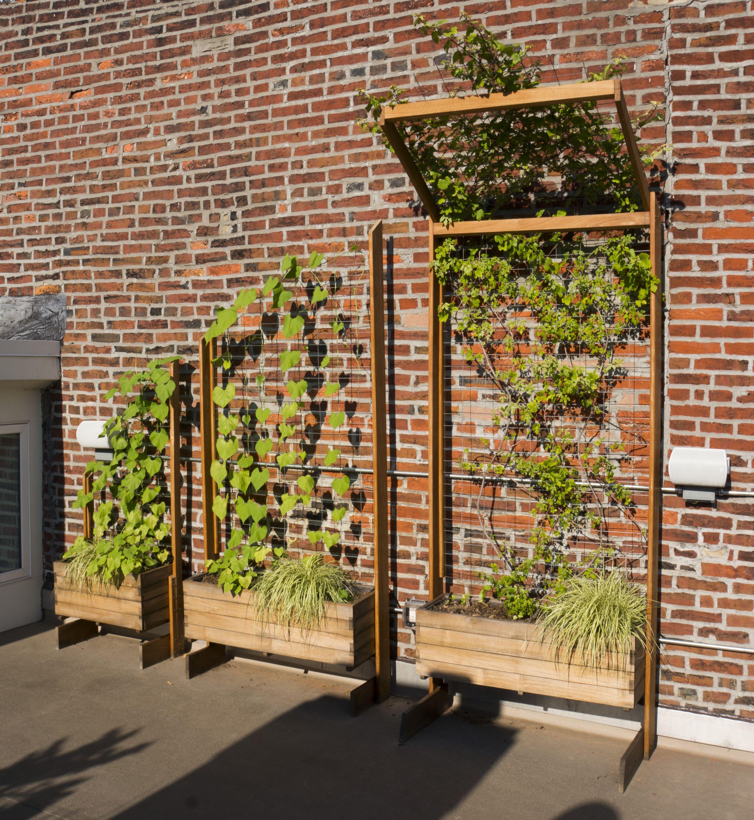A Set Of Custom Freestanding Trellis Planters I Made For