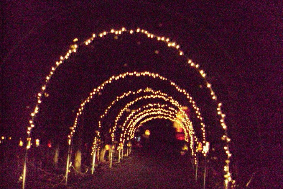 Watt's Christmas Wonderland...located in Goshen, NY, this
