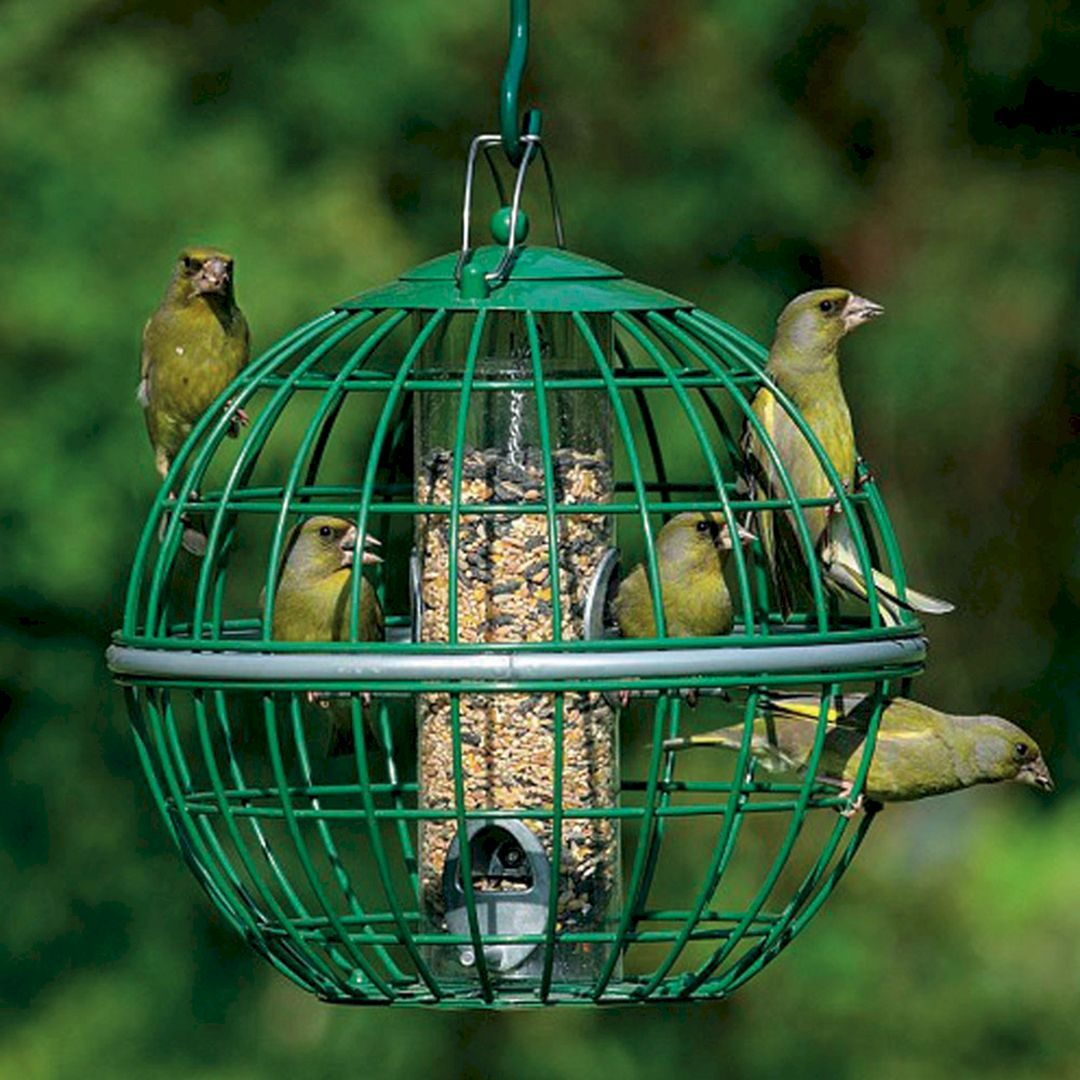40 awesome bird feeders ideas that will fill your beautiful