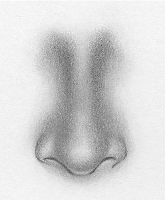 disegnare naso