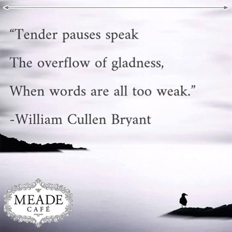 """"""" Tender pauses speak the overflow of gladness, when words are all too weak. """" - William Cullen Bryant. Meade Cafe wishes everyone a fantastic Sunday. #motivation #Sunday"""