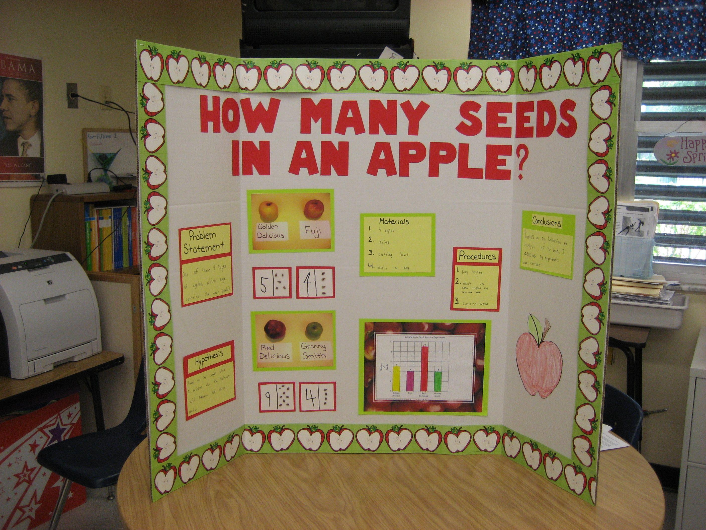 Science Fair Project - Kindergarten School Ideas
