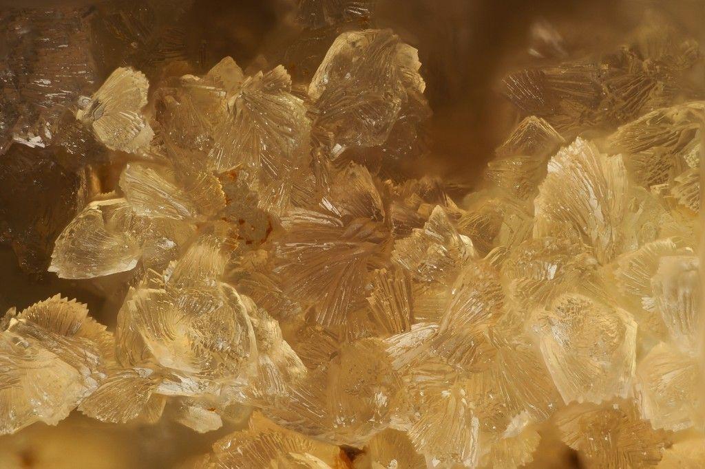 Leukophosphite. Teškov, Rokycany, Böhmen, Tschechien FOV=2.5 mm Photo Stephan Wolfsried