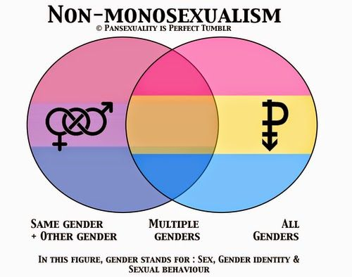Sexual orientation test pansexual