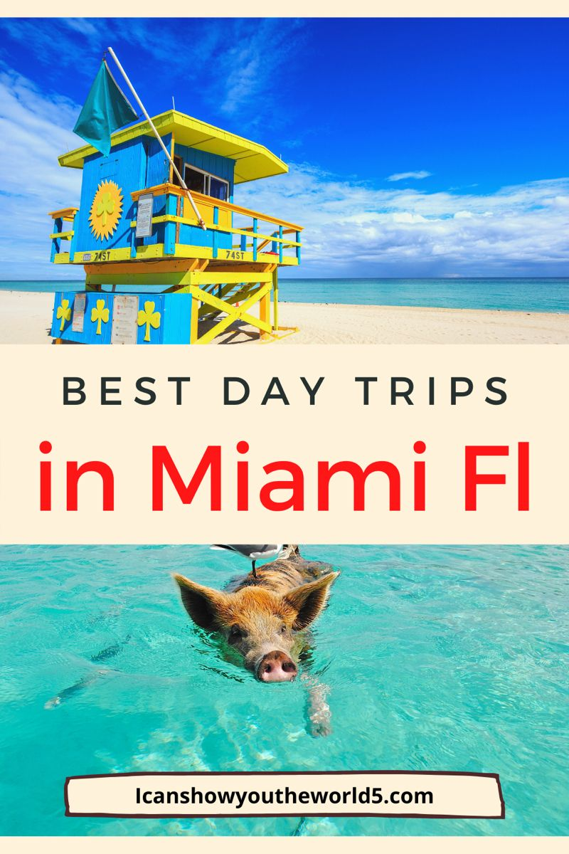 5 Of The Most Awesome Miami Day Trips I Can Show You The World Day Trips Trip Travel Usa