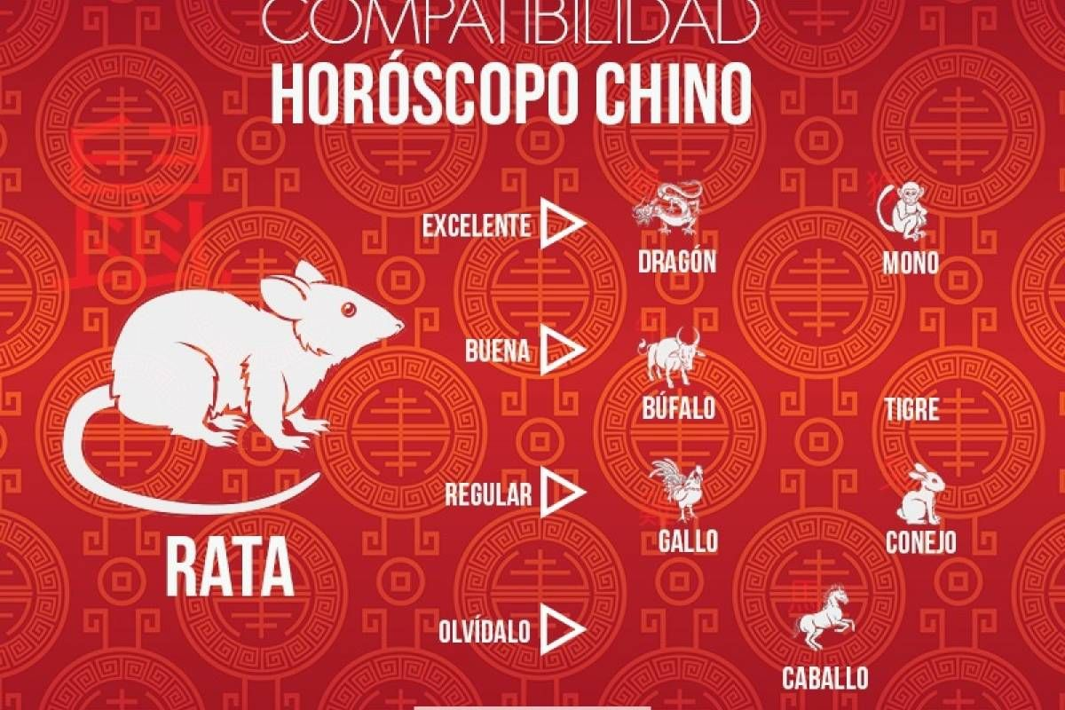 19 Ideas De Horoscopo Chino Horoscopo Chino Horoscopos Signos Del Zodiaco Chino