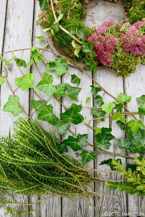 Photo of DIY moss wreath – simply homemade and fresh from nature – Mrs Greenery