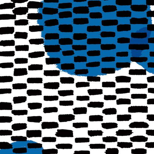 ansejp: textile_20130603