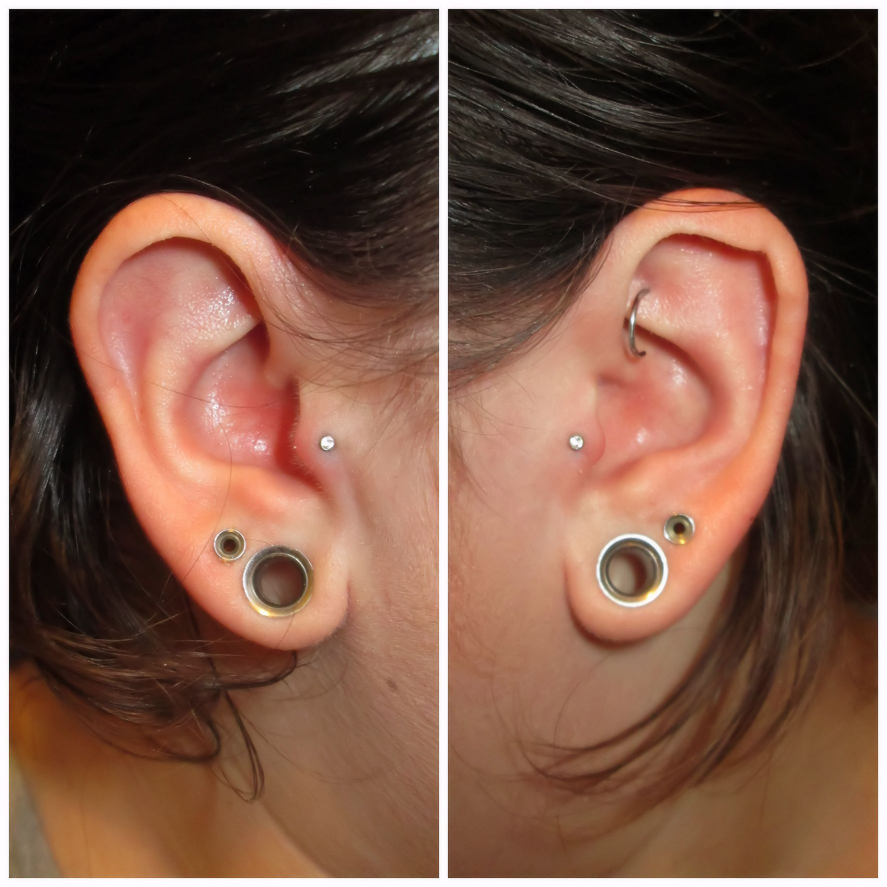 Gauging or stretching your ears information and stretch gauge kits - Explore Stretched Ears Tragus And More
