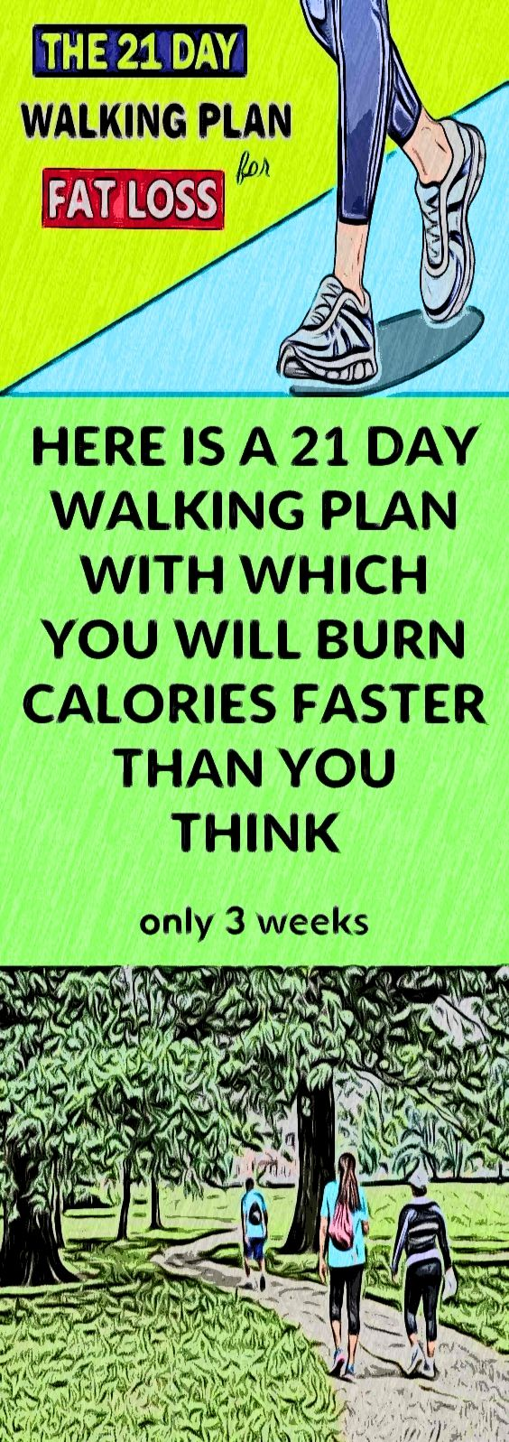 A 21Day Walking Plan For Fat Loss Walking might seem unglamorous next to more calorieintensive and sweatbuffed commuter options like cycling and running but it comes with...