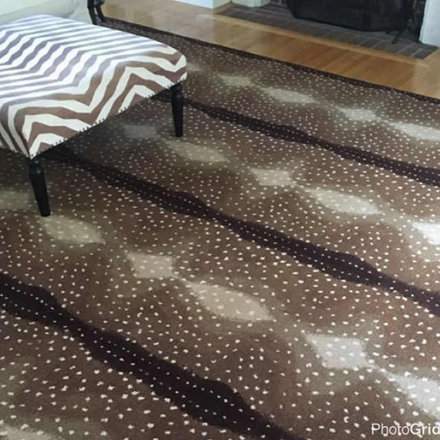 Pin On Bound Remnants & Discontinued Area Rugs