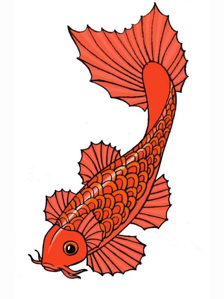 Draw a Koi Fish   Pinterest   Koi, Fish and Art lessons
