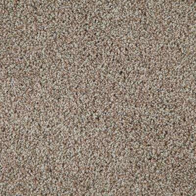 Americana Color Sedona Texture 12 Ft Carpet Carpet Samples Carpet Tiles Buying Carpet