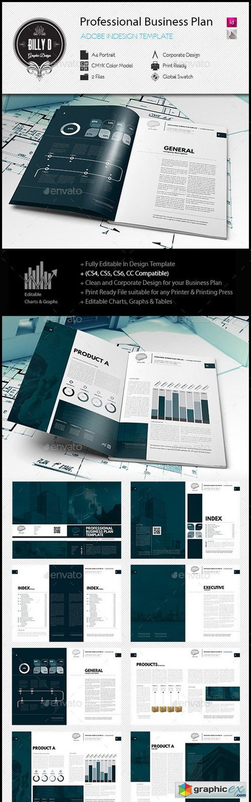 Professional Business Plan Template  Template