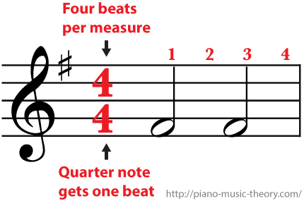 4 4 Time Signature Four Beats Per Measure And Each Half Note Gets Two Beats Music Theory Music Beats Ukulele Lesson