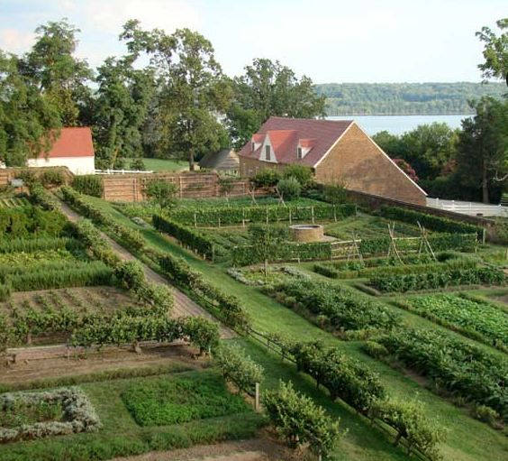 Kitchen Garden At Mount Vernon Guests Can Visit The