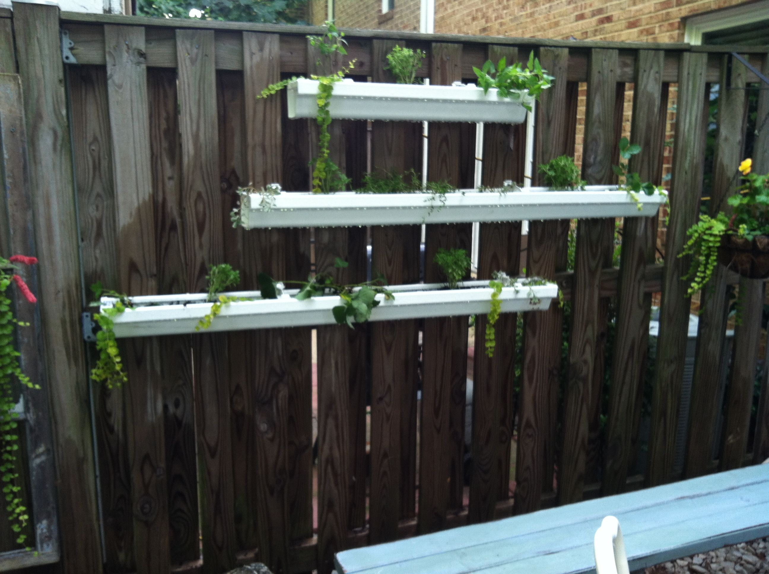 Gutter Garden Vinyl Gutters Capped And Mounted With Gutter Clips Drilled Holes Every 4 Inches On The Bo Gutter Garden Diy Self Watering Planter Rain Gutters