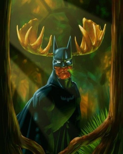 Beware the Bat-Moose | Batman, Superhero, Geek humor