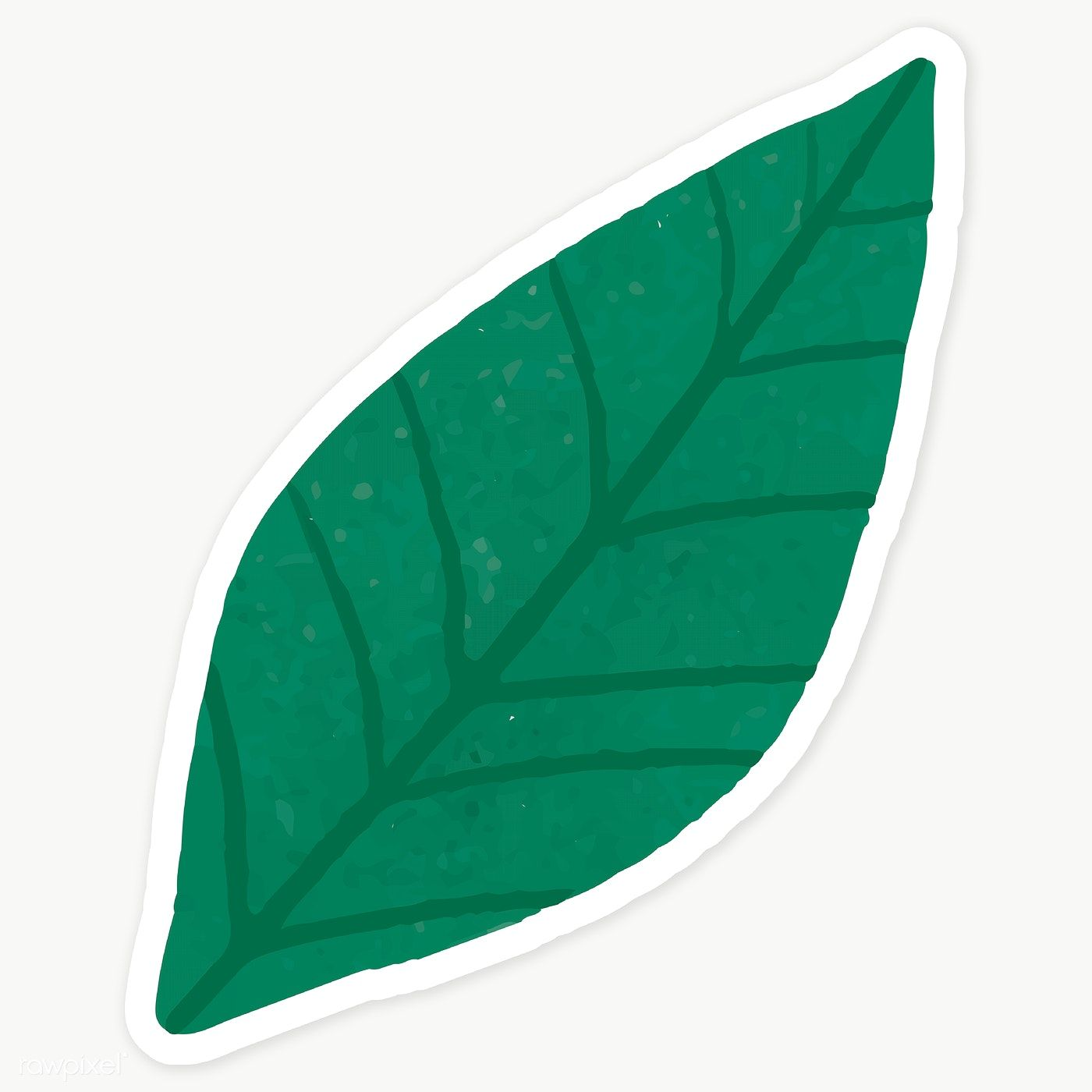 Download Premium Png Of Green Leaves Sticker Transparent Png 2030663