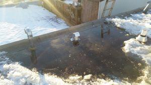 Temporary Flat Roof Repair Edmonton June 15 2015 Flat Roof Repair Roof Repair Rustic Pergola