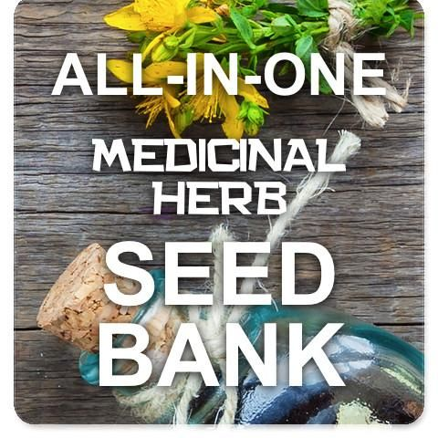 All-in-1 Herbal Medicine Seed Bank