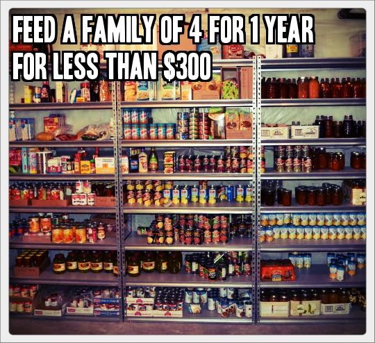 Feed A Family Of 4 For 1 Year For Less Than 300 Tinhatranch Prepper Survival Survival Prepping Shtf Survival